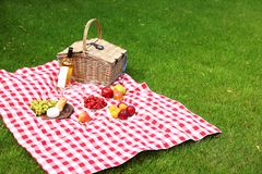 Free Picnic Basket With Products And Bottle Of  On Checkered Blanket In Garden Royalty Free Stock Image - 158131716