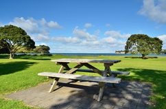 Picnic Bench. A picnic bench in a park setting Royalty Free Stock Photos
