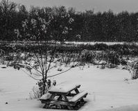 Picnic bench covered in snow Royalty Free Stock Photo