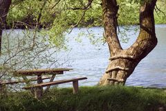 Picnic bench by river Royalty Free Stock Image