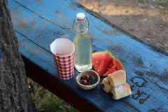 Picnic on the bench Royalty Free Stock Images