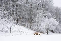 Picnic Bench Under Snow Covered tree. Picnic table covered with snow under a tree with fresh snow in branches Royalty Free Stock Image