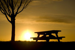 Picnic Bench Under Tree Silhouetted at Sunset Royalty Free Stock Photos