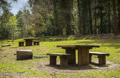 Picnic Benches in a clearing in the woods. Picnic benches in a clearing surrounded by trees. Its an idyllic setting and very inviting to families wishing to take Royalty Free Stock Images
