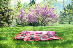 Picnic blanket. Ready for picnic Royalty Free Stock Photo