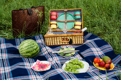 Picnic blanket and basket. With fruits and wine bottle in a sunlit grassy meadow Stock Images