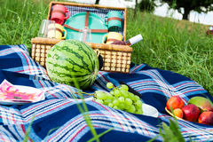 Picnic blanket and basket. With fruits and wine bottle in a sunlit grassy meadow Royalty Free Stock Photography