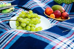 Picnic blanket Stock Images
