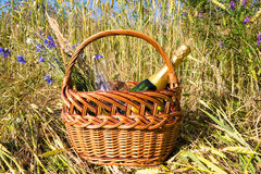 Picnic blanket. In cornfield in summer time Royalty Free Stock Photo