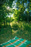 Picnic Blanket in the Woods. Plaid picnic blanket laid out in a grassy woodland setting Stock Photography