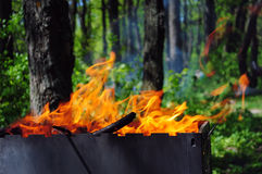 Picnic bonfire in the summer wood or park Royalty Free Stock Image