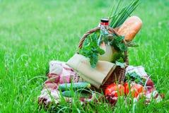 Picnic Bottle Baguette Greens Vegetables Raw Food Stock Photos