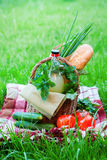 Picnic Bottle Baguette Greens Vegetables Raw Food Stock Photography