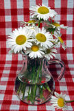 Picnic Bouquet Stock Photography