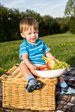 Picnic boy Royalty Free Stock Photo