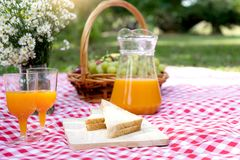 Picnic bread crossiant basket with fruit on  red white cloth. And vase flower Stock Images