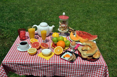 Picnic breakfast Royalty Free Stock Photos