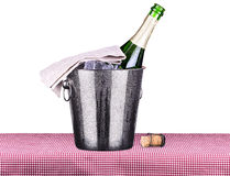 Picnic with champagne and food Stock Images