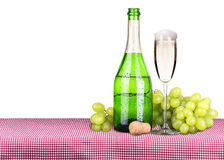 Picnic with champagne and food Royalty Free Stock Photography