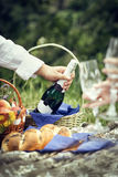 Picnic with champagne and fruits Royalty Free Stock Image
