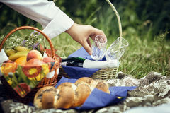 Picnic with champagne, fruits on the grass Royalty Free Stock Images