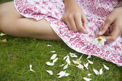 Picnic Close up Pulling Petals. Close up detail view of teenage girl's hands pulling petals off a daisy flower Stock Photo