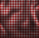 Picnic cloth. Red picnic cloth with some folds in it Royalty Free Stock Photo