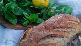 Picnic con pane fresco, basilico, il limone ed i pomodori rossi stock footage