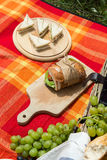 Picnic concept - food and wine on the blanket.  Royalty Free Stock Images