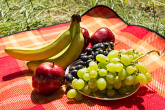 Picnic concept - fruits on blanket.  Royalty Free Stock Images
