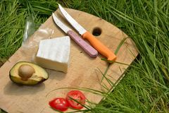 Picnic concept, knifes cheese avocado tomatoes Stock Image