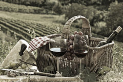 Picnic in the country. A DSLR photograph of a picnic in the countryside with wine, sausages and cheese in a wicker basket Stock Photo