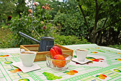 Picnic in countryside Stock Image