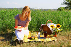 Picnic On The Countryside Stock Photos
