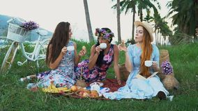 Picnic in the countryside. Women friends enjoying picnic, drinking tea, talking to each other. stock video