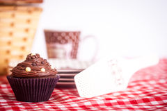 Picnic and Cupcake Royalty Free Stock Photos