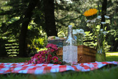 Picnic Cupcakes Flower Royalty Free Stock Photo