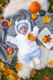 Little boy relaxing in autumn park royalty free stock photo