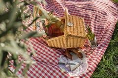 picnic del cestino Fotografie Stock