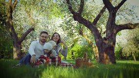 Picnic della famiglia nel parco sull'erba stock footage