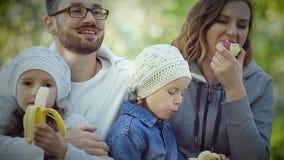 Picnic della famiglia nel parco sull'erba archivi video