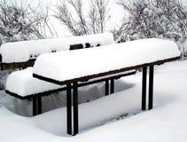 Picnic della neve Fotografie Stock