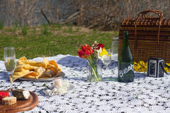Picnic della primavera Fotografia Stock