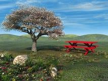 Picnic della sorgente Fotografie Stock Libere da Diritti