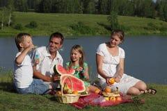 Picnic delle famiglie Fotografia Stock Libera da Diritti