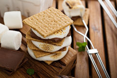 Picnic dessert smores with marshmallows Stock Photography