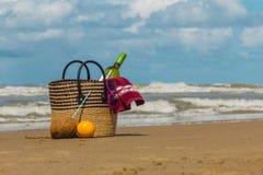 Picnic di estate alla spiaggia Fotografia Stock Libera da Diritti