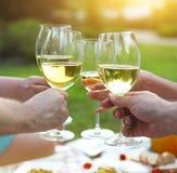 Picnic di estate con vino bianco Immagine Stock Libera da Diritti