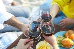 Picnic di estate con vino rosso Fotografie Stock Libere da Diritti