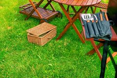 Picnic di estate nel cortile Fotografie Stock Libere da Diritti